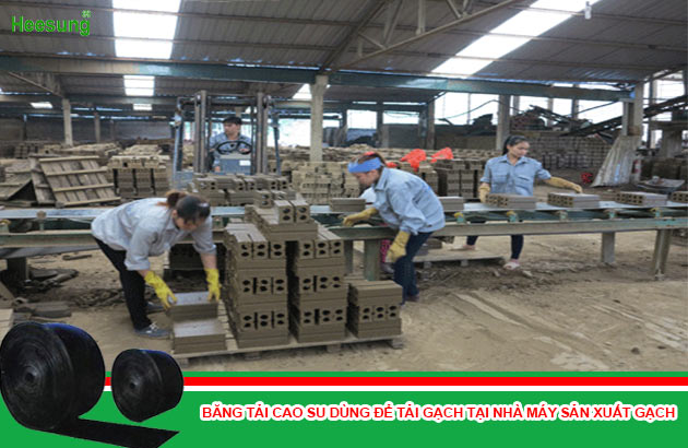 băng tải cao su dùng trong nhà máy sản xuất gạch